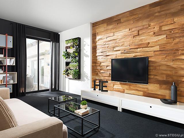 exterior verblendsteine hafnermeister sulzer. Black Bedroom Furniture Sets. Home Design Ideas